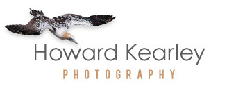 Howard Kearley Photography